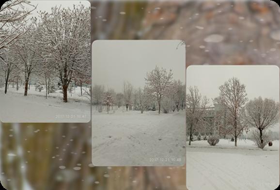 冬日速写,寒冬终来