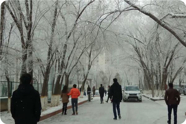 蒋江:心中曲,寒雪颂,祝安好。