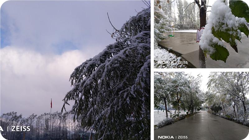 飘雪·又一年