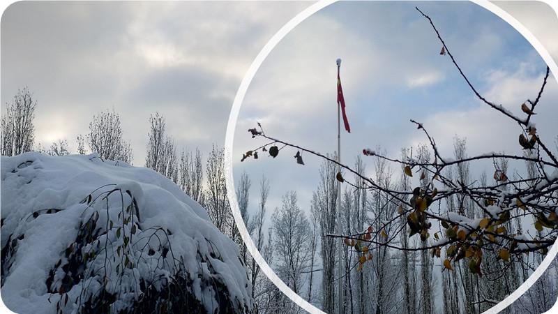 新疆雪景·美若不胜寒