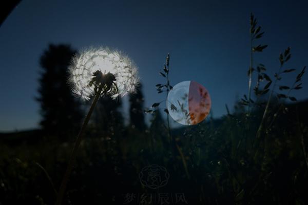 今天的月亮很圆,我很想你