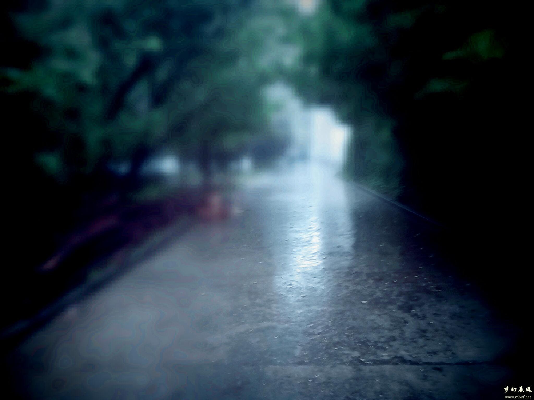 雨中路 ©姜辰 摄
